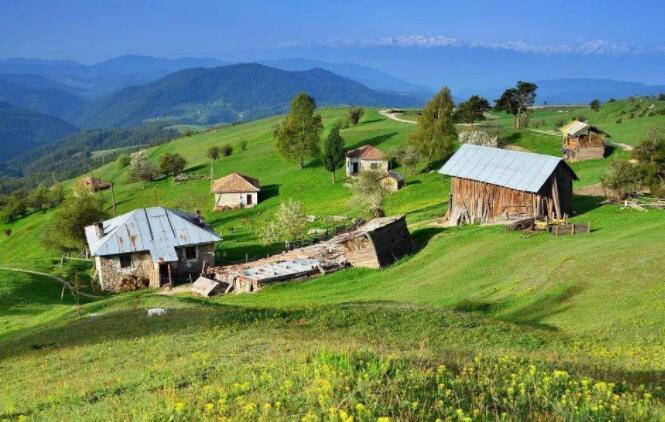 提高乡村社会文明程度大力推动乡村文化振兴