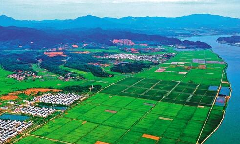 """""""十四五""""末土地出让收益用于农业农村比例将达50%以上 取之土地 用之于农..."""